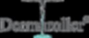 dermaroller-logo-300x129.png