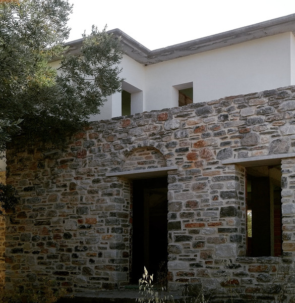 House in an olive grove