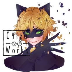 Miraculous Chat Noir Fanart
