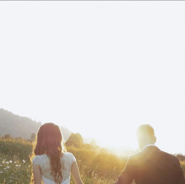 Filmare nunta zarnesti