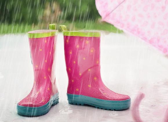 25_Il pleut