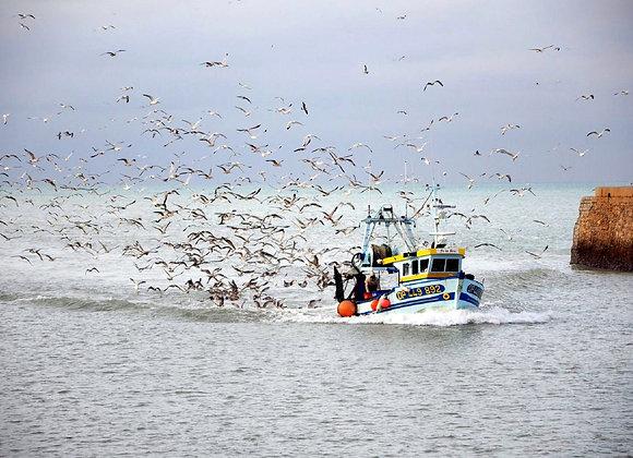 10_Pêcheurs d'Islande