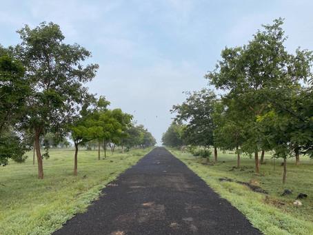Sustainability Tracks