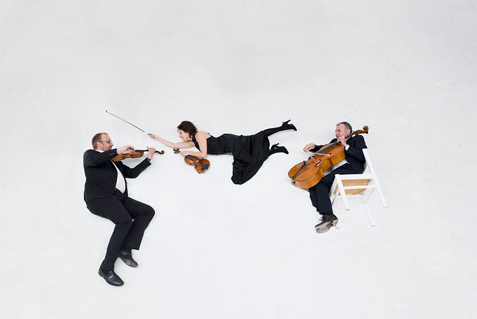 triofenix, Tony Nys, Shirly Laub, Karel Steylaerts, viool, altviool, cello, violin, viola, music, classical