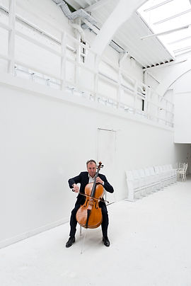 karel steylaers, cello, biographie