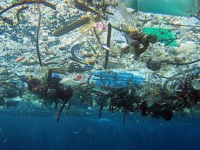 garbage.Plastikmuell_NOAA.jpg_edited.jpg