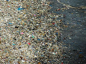 garbage-plastic-beach-03_edited.jpg