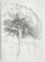 Drawing 4 9 13.jpg