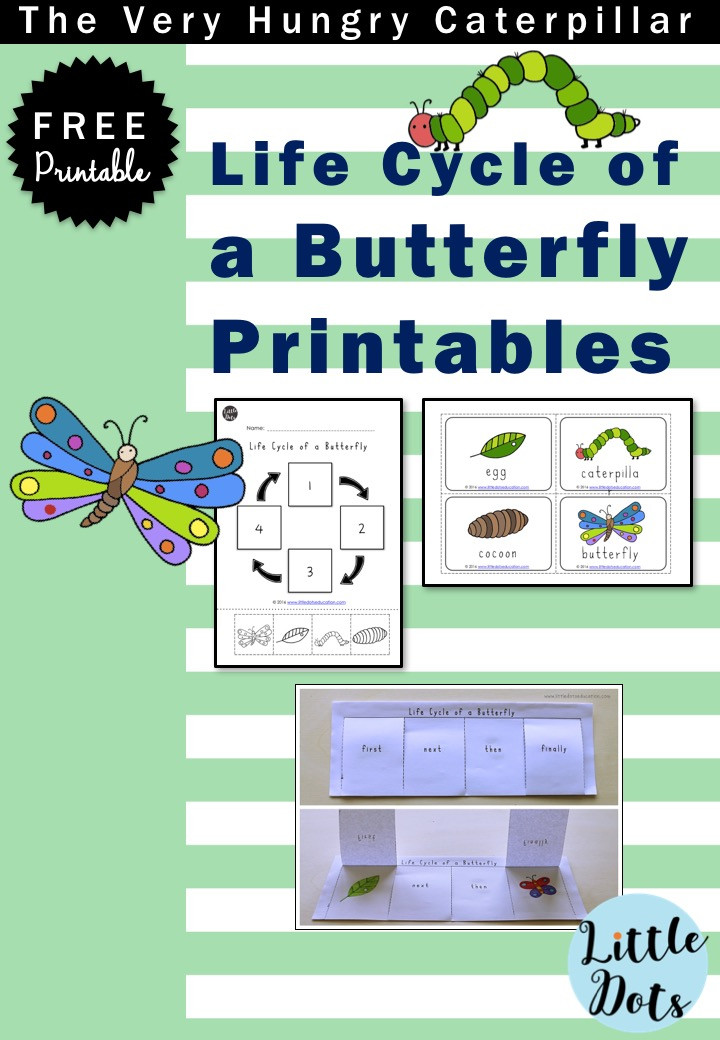 Free life cycle of a butterfly printable for preschool, pre-k or kindergarten