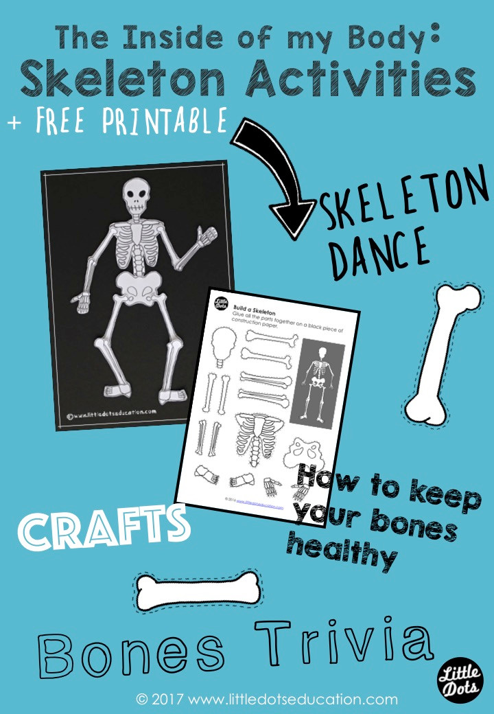 The Inside of my Body theme. Skeleton Activities and Free Printable