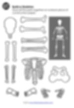 Free skeleton printable for preschool and kindergarten class.