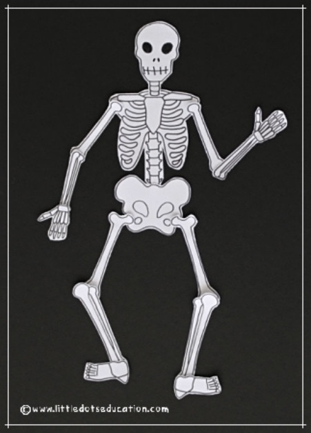 Skeleton Printable