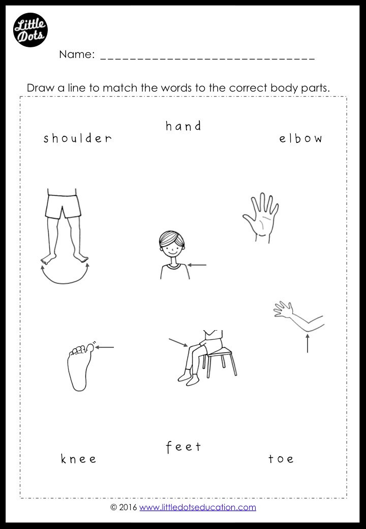 Free body parts activity for preschool, pre-k or kindergarten class. Match the words to the correct body parts activity.