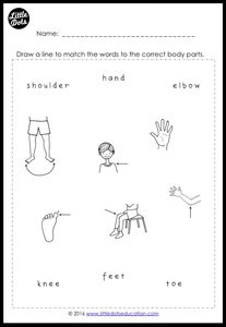 Free Body Parts Worksheets for Preschool