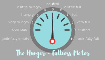 Hunger Fullness scale, Hunger Fullness Meter, Intuitve Eating, Dietitian, Rockville, Emotional Eating