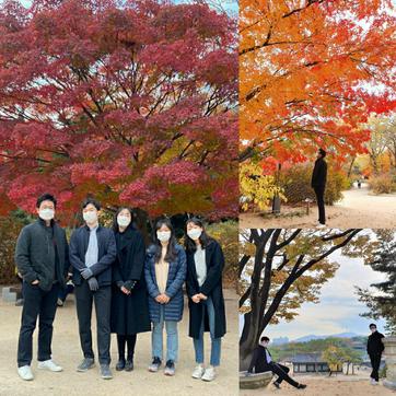 With plenty of fall colors at Changgyeong Palace 🍁