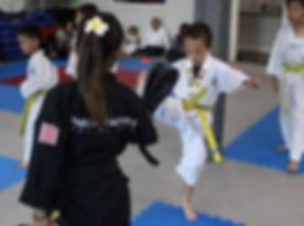 Martial Arts Program