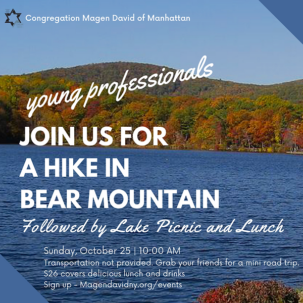 Young Professionals hike in bear mountai