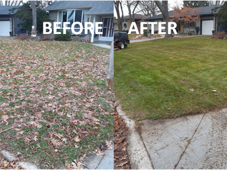 1104 Belair Front yard before & after.pn
