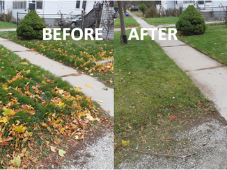 237 Cobden Front Yard before & after.png