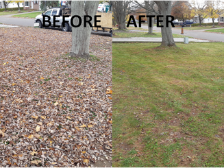 508 Oozloffsky Front Yard before & after