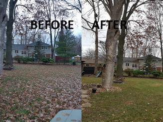 1104 Belair backyard before & after.png