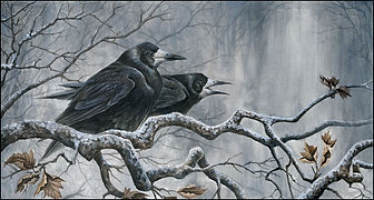 rooks on branches