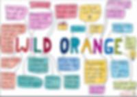 Wild Orange.PNG