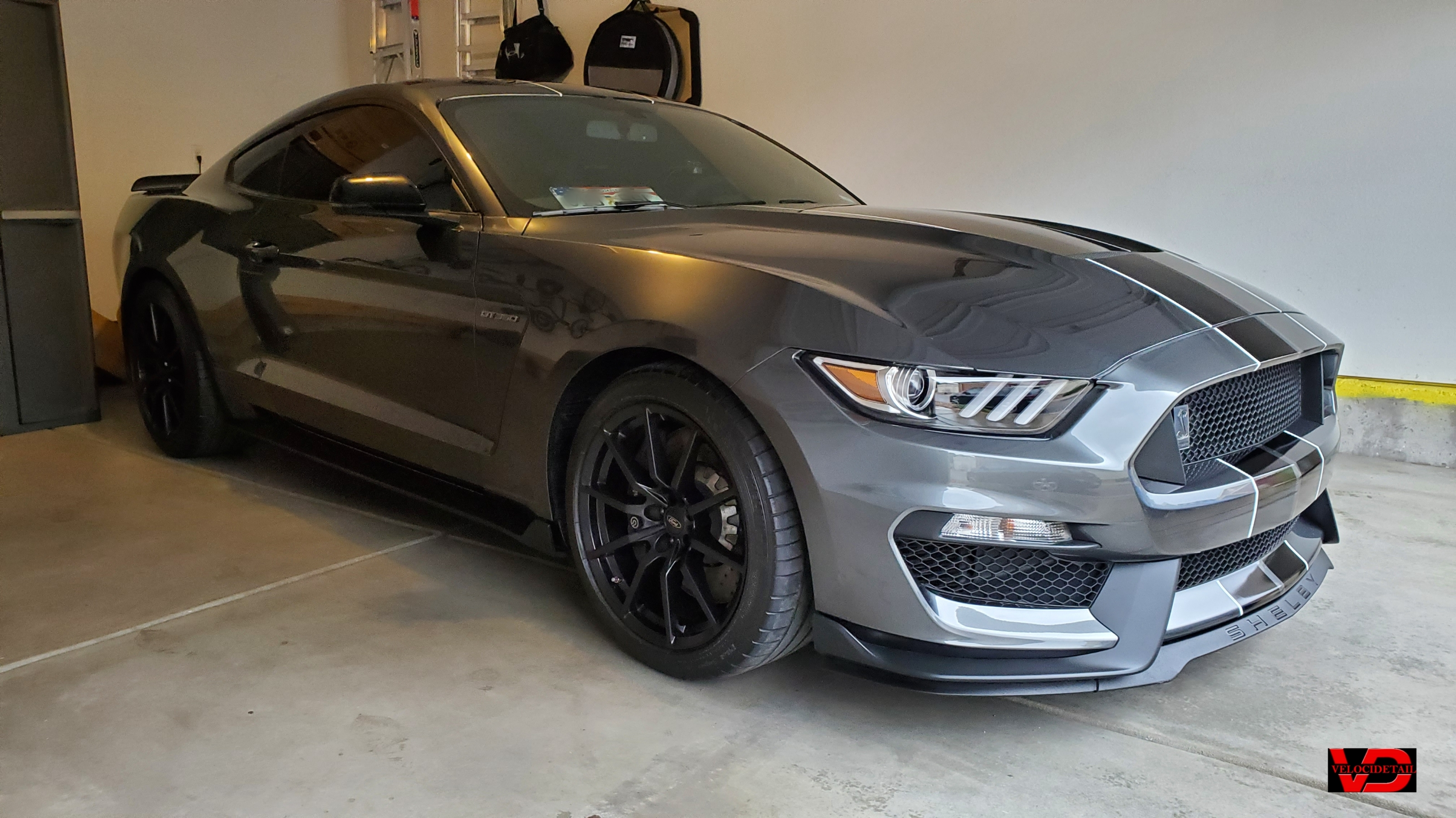 GT350_polished_&_coated