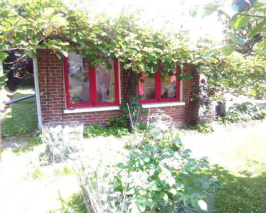petit atelier,l'actinidia a bien grandi ....