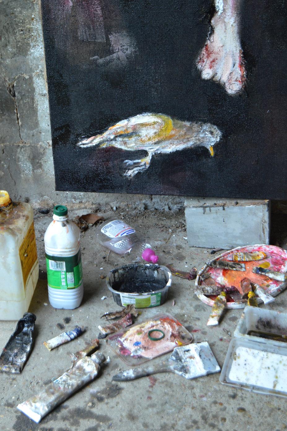 Travail en cours ....dans la jungle, l'oiseau est mort ...