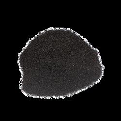 Madagascan vanilla seeds