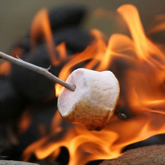 Cincinnati RV Rental Smores