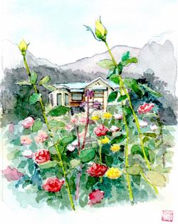 鎌倉文学館のバラs
