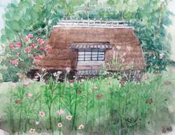039_コスモス咲くいやしの里(山梨・富士河口湖町)-2017/水彩F3