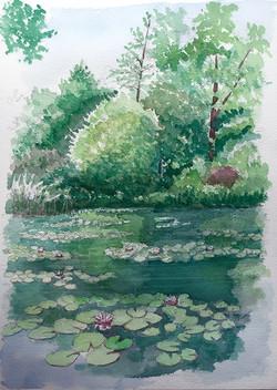 026_モネの池1_フランス