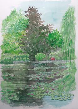 027_モネの池2_フランス