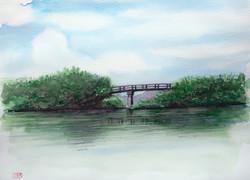 028_近江八幡水郷2(滋賀・近江八幡市)-2014/水彩F8