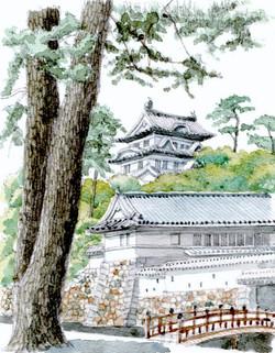 小田原城銅門と黒松s