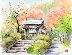 川合昭二-浄智寺の秋s
