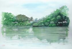 027_近江八幡水郷1(滋賀・近江八幡市)-2014/水彩F8