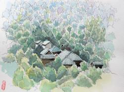 009_東慶寺を望む(神奈川・鎌倉市)-2009/水彩F2