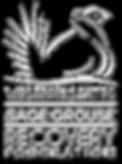 SGF-logo-white-transp-shadow.png