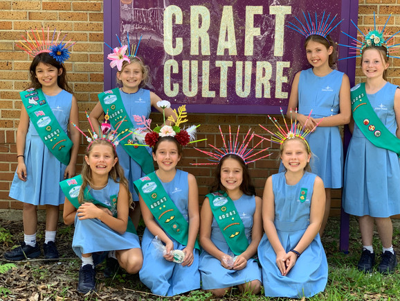 Girl Scout Classes