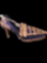 PNG image-0D66D568A378-1.png