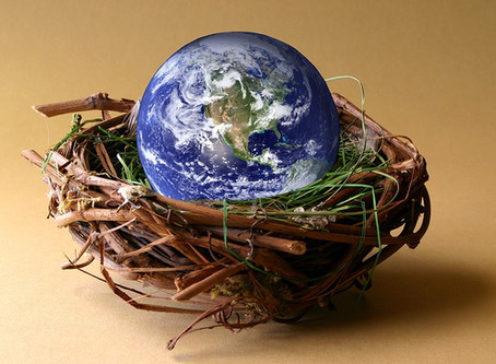 Taking a Sacred Pause with Earth