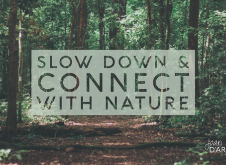 Slow Down and Connect with Nature (Spiritual Tool #8)