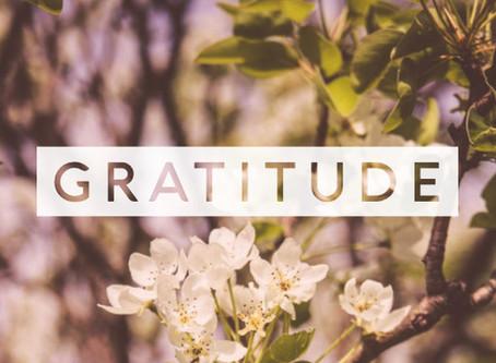 Practicing Gratitude Like a 21st Century Spiritual Warrior - (Spiritual Tool #6)