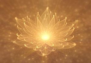 Golden lotus lighter.jpg
