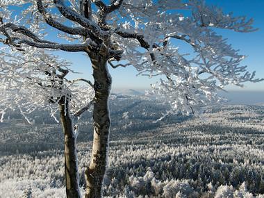 Výhled z Luže k Jedlové hoře